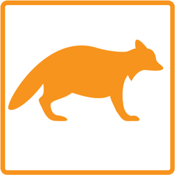 mmr-icons-orange-raccoon250